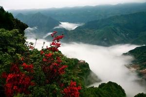 苏马荡文化旅游节